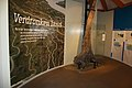 Verdronken Land van Saeftinghe 07.jpg