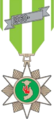 Vietnam Campaign Medal, with 1960- clasp.png