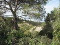 View from Givat Hahagna, Carmel (2).JPG