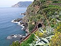 View from Vernazza (4712254050).jpg