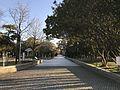 View in Hiroshima Peace Memorial Park.jpg