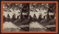 View of a private porch, Little Falls, N.Y, from Robert N. Dennis collection of stereoscopic views.png