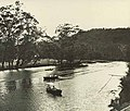 View of the public picnic ground on the river bank at Audley, Royal National Park (NSW) (6439128395).jpg