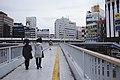 Views around Tokyo in 2019 in April 04.jpg