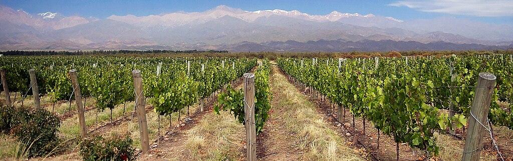 Vinárske oblasti - Mendoza, Argentína