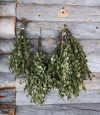 Banny venik - Finnish birch vihta