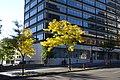 Ville-Marie @ Montreal (30116930130).jpg