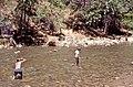 Virgin River - Zion National Park, Utah - USA.jpg