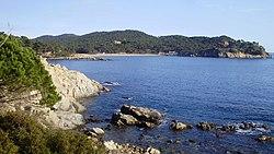 Vista platja de Castell-Camí de ronda Palamós a les Cales Cala Estreta (Costa Brava) - panoramio.jpg