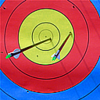 WA target with arrows bcccindy casito.png