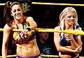 WWE NXT 2015-03-27 22-56-52 ILCE-6000 3460 DxO (17180754079) (cropped).jpg