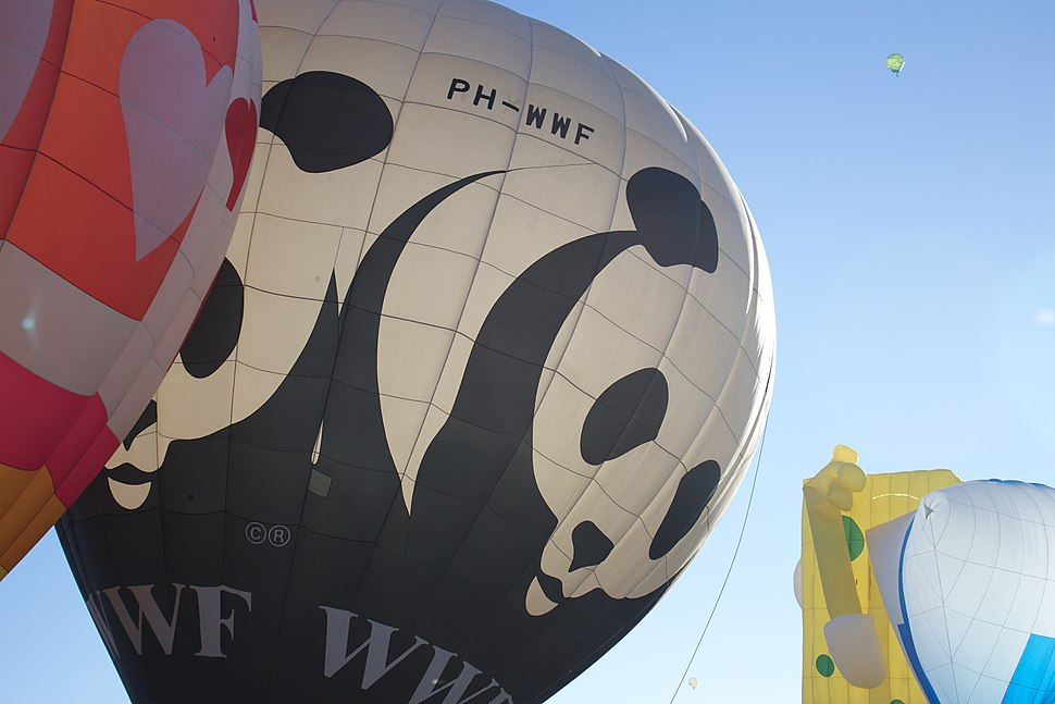 WWF Big Ballon 2013