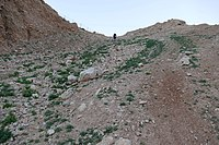 Wadi-Makukh-677.jpg