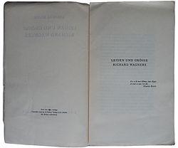 Thomas mann essays