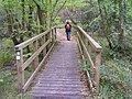 Walker crossing a bridge on the Purbeck Way near Norden Heath - geograph.org.uk - 268755.jpg