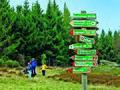 Wanderwege binder.jpg