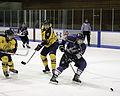 Western Mustangs men's hockey.jpg