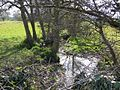 Westmeadow Brook - geograph.org.uk - 1228998.jpg