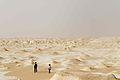 White desert (4014264183).jpg