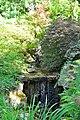 Wikipedia 13. Fotoworkshop Botanischer Garten Erlangen 2013 by-RaBoe 018.jpg