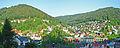 Wildbad-Panorama-1.jpg