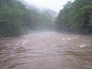 Williams River (West Virginia) - Image: Williams Riv