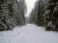 Winter road in Estonia.jpg