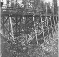 Wooden trestle bridge at Fort Lawton, Seattle, Washington, June 15, 1898 (KIEHL 231).jpeg