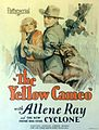 Yellow Cameo poster.jpg