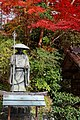 Yoshimine-dera (8255236665).jpg