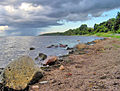 Zatoka Pucka - Bay of Puck (8).jpg