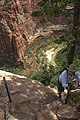 Zion Nat'l Park - the spectacular Angel's Landing trail is certainly not for the faint of heart.!! - descending is a little airy - (20111183975).jpg