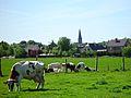 Zomergem, Bélgica - panoramio.jpg