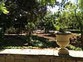 """""""000 San Anton Palace Garden 013"""".jpg"""