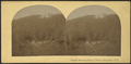 """Catskill Mountain House,"" Catskill Mountains, N.Y, from Robert N. Dennis collection of stereoscopic views.png"