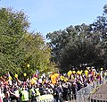 """""""China out of Tibet"""" sign and Flag of Tibet at Free Tibet protest at the 2008 Summer Olympics torch relay in Commonwealth Park Canberra on 24 April 2008, Tibet protest with police cordon (cropped).jpg"""