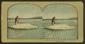 """Larry"" Catching and Cooking Trout, Yellowstone National Park, from Robert N. Dennis collection of stereoscopic views.png"