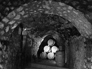 (Bodega Peñacoba, siglo XV Bar de tapas y restaurante) pic. bb8.jpg