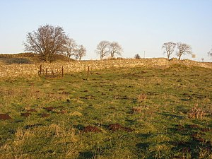 Milecastle 31 - Image: (The site of) Milecastle 31 just east of Brocolitia geograph.org.uk 1075156