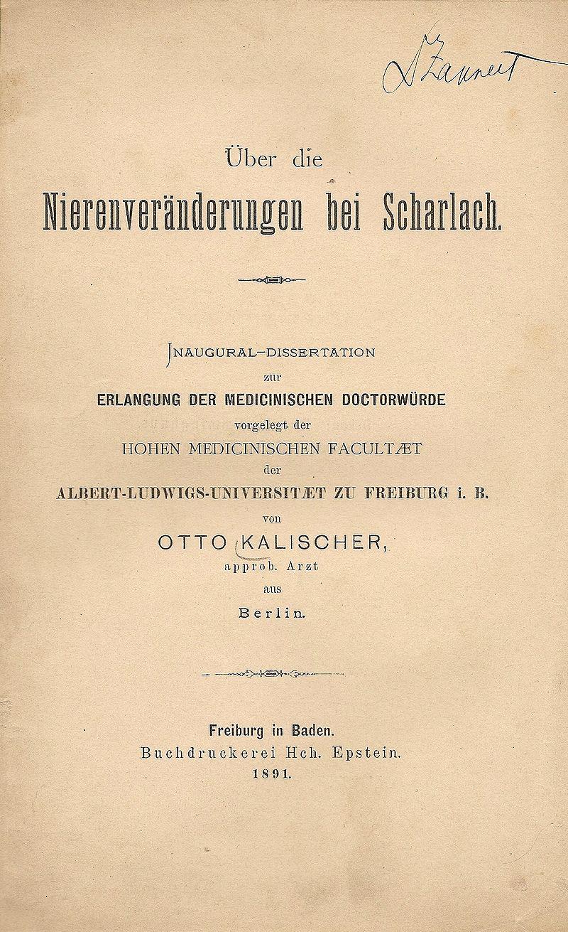 %C3%9Cber die Nierenver%C3%A4nderungen bei Scharlach (1891).jpg