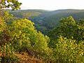 Барви вересня - panoramio.jpg