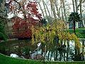 Ботанический сад - panoramio (3).jpg