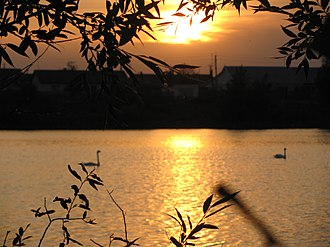 Zhirnovsky District - Lake Liman in Zhirnovsky District