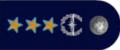 Действительный государственный советник РФ 1 класса (Минтранс1).png
