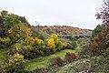 Золота осінь у Соколиних горах.jpg
