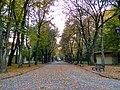 Львів, Стрийський парк 10-2018 12.jpg