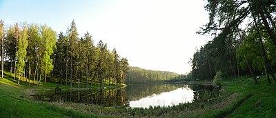 Парк-пам'ятка садово-паркового мистецтва «Тростянецький». Перше озеро.jpg