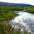 Река Бедярыш, Челябинская область - panoramio.jpg