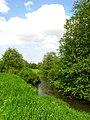 Река Стрелка около поселка Горбунки.jpg