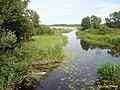 Река и озеро - panoramio.jpg
